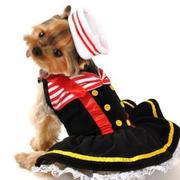 Pet costumes picture of Sailor Dog Halloween Costume.JPG