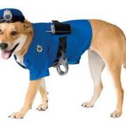 Police Dog Halloween Costume images.JPG