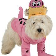 Flintstone Dog Costumes picture of funny dog costume.JPG